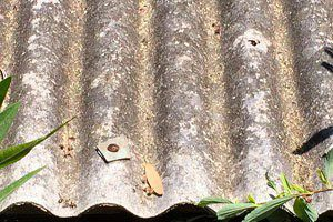 landlords-law-on-asbestos-dispose